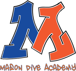 Image result for mason dive academy